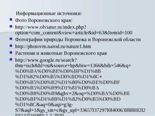 Информационные источники: Фото Воронежского края: http://www.olviatur.ru/ind