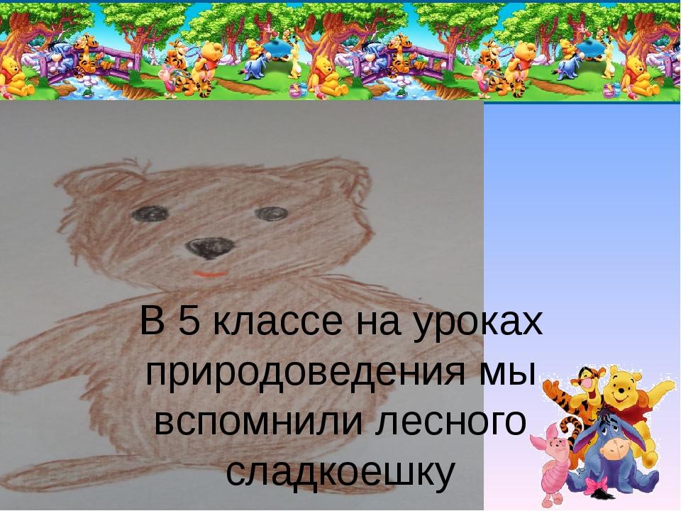 В 5 классе на уроках природоведения мы вспомнили лесного сладкоешку