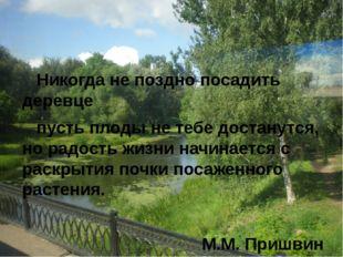 Никогда не поздно посадить деревце пусть плоды не тебе достанутся, но радост