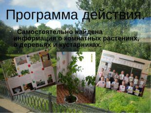 Самостоятельно найдена информация о комнатных растениях, о деревьях и кустар