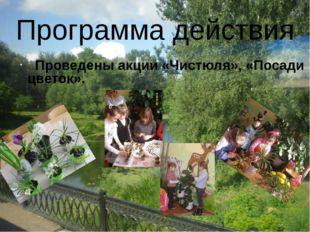 Проведены акции «Чистюля», «Посади цветок». Программа действия