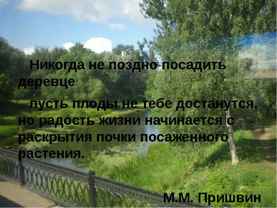 Никогда не поздно посадить деревце пусть плоды не тебе достанутся, но радост...