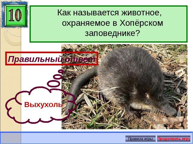Как называется животное, охраняемое в Хопёрском заповеднике? Правильный ответ...