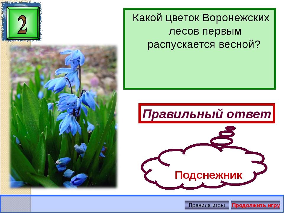 Какой цветок Воронежских лесов первым распускается весной? Правильный ответ П...