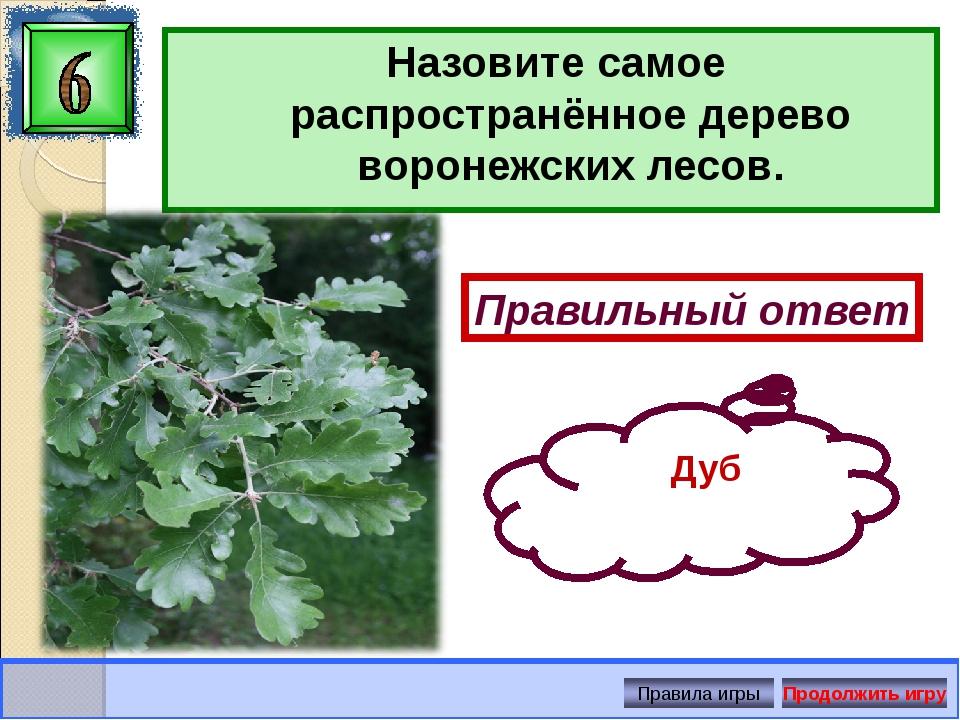 Назовите самое распространённое дерево воронежских лесов. Правильный ответ Ду...
