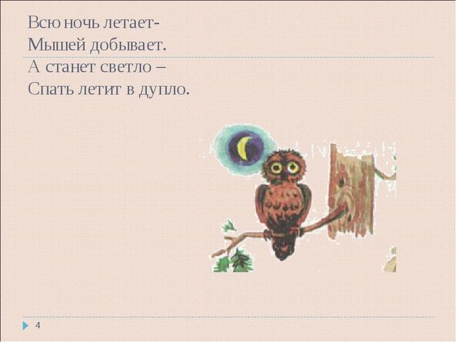 Всю ночь летает- Мышей добывает. А станет светло – Спать летит в дупло. *