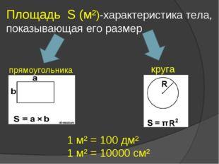 Площадь S (м²)-характеристика тела, показывающая его размер прямоугольника кр