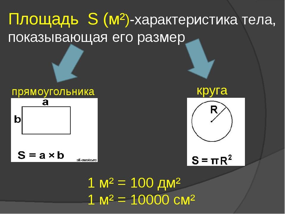 Площадь S (м²)-характеристика тела, показывающая его размер прямоугольника кр...