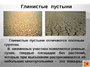 Климатические условия пустыни Природная зона tСвоздуха Осадки Природные явлен