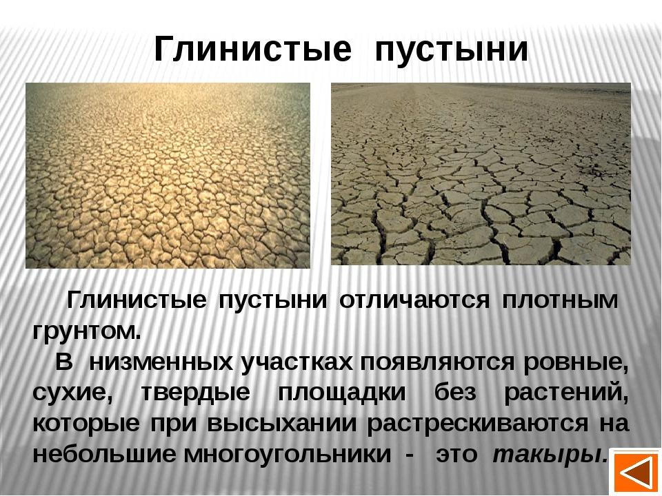 Климатические условия пустыни Природная зона tСвоздуха Осадки Природные явлен...