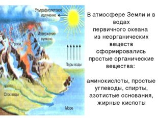 В атмосфере Земли и в водах первичного океана из неорганических веществ сформ
