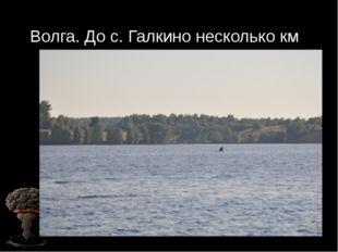 Волга. До с. Галкино несколько км