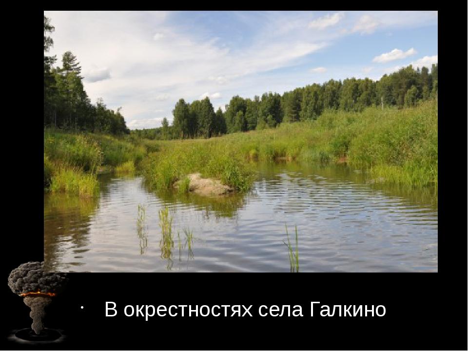 В окрестностях села Галкино