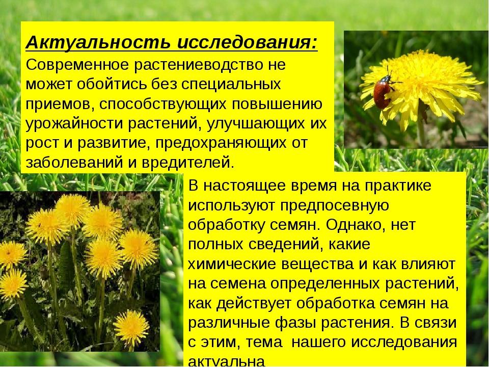 Актуальность исследования: Современное растениеводство не может обойтись без...