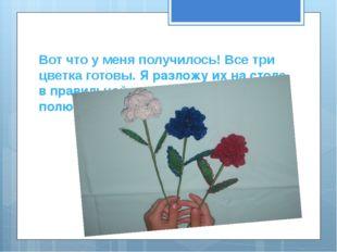 Вот что у меня получилось! Все три цветка готовы. Я разложу их на столе в пра