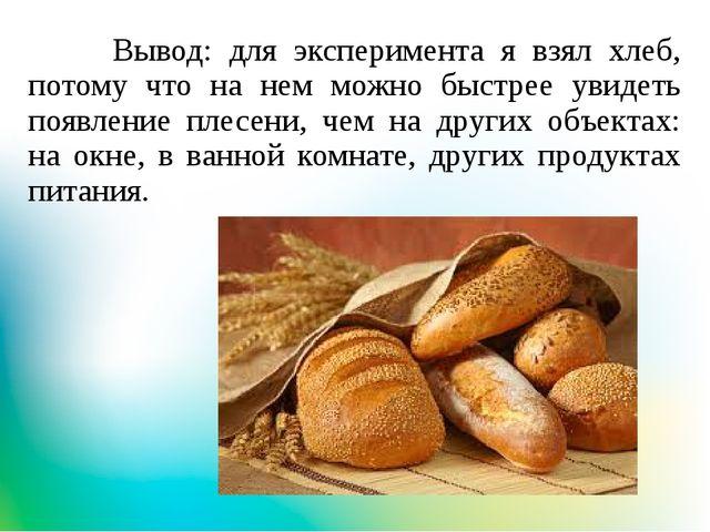 Вывод: для эксперимента я взял хлеб, потому что на нем можно быстрее увидеть...