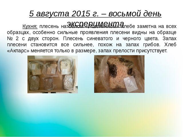 5 августа 2015 г. – восьмой день эксперимента Кухня: плесень на белом «Пшенич...
