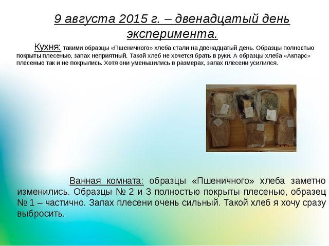 9 августа 2015 г. – двенадцатый день эксперимента. Кухня: такими образцы «Пше...