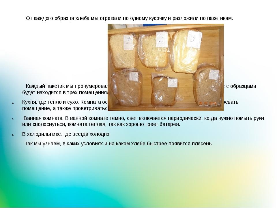 От каждого образца хлеба мы отрезали по одному кусочку и разложили по пакети...