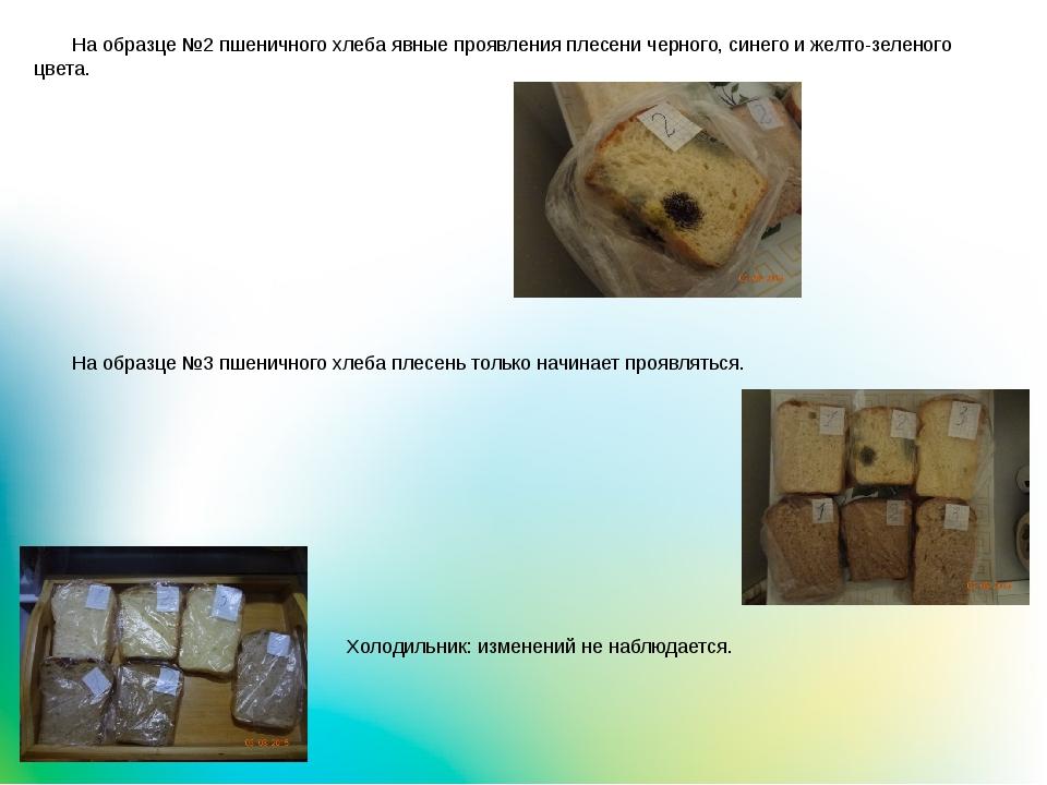 На образце №2 пшеничного хлеба явные проявления плесени черного, синего и же...