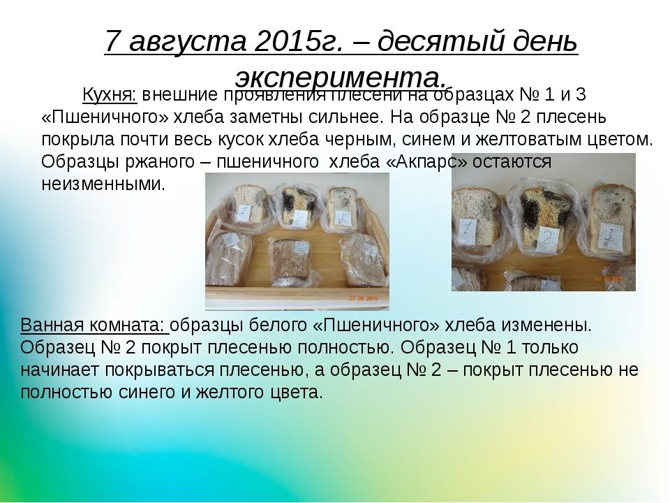 7 августа 2015г. – десятый день эксперимента. Кухня: внешние проявления плес...