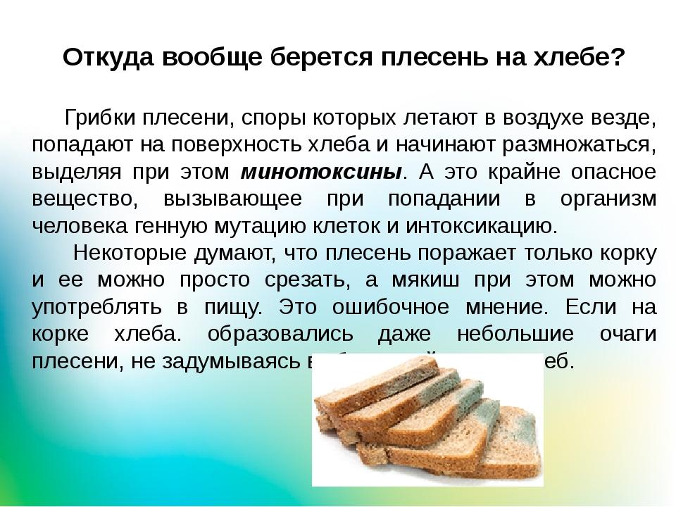 Откуда вообще берется плесень на хлебе? Грибки плесени, споры которых летают...
