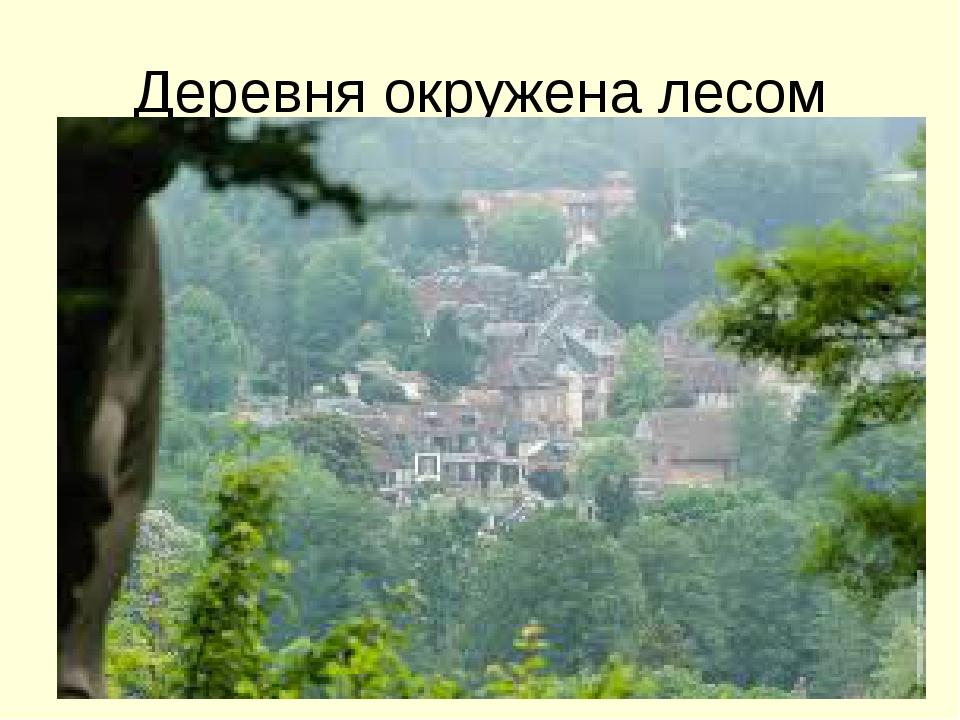 Деревня окружена лесом