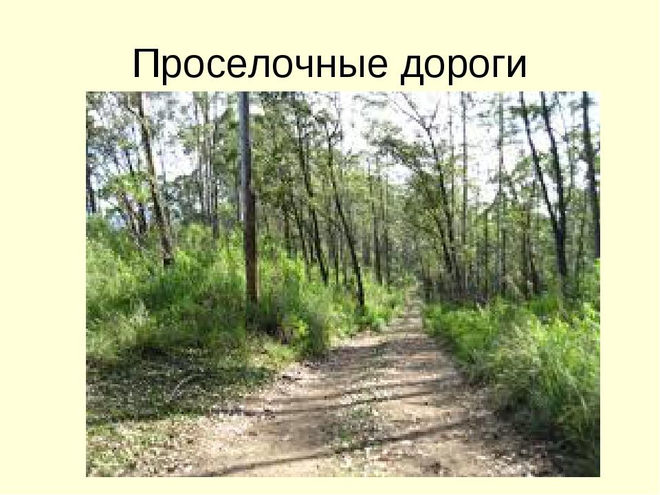 Проселочные дороги