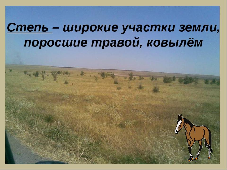Степь – широкие участки земли, поросшие травой, ковылём