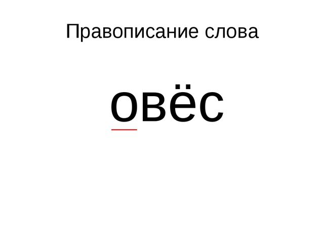 Правописание слова овёс