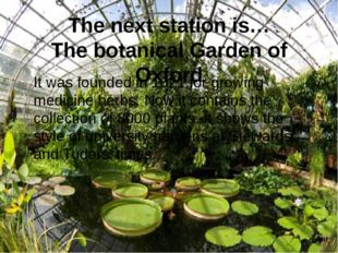 The next station is… The botanical Garden of Oxford It was founded in 1621 fo