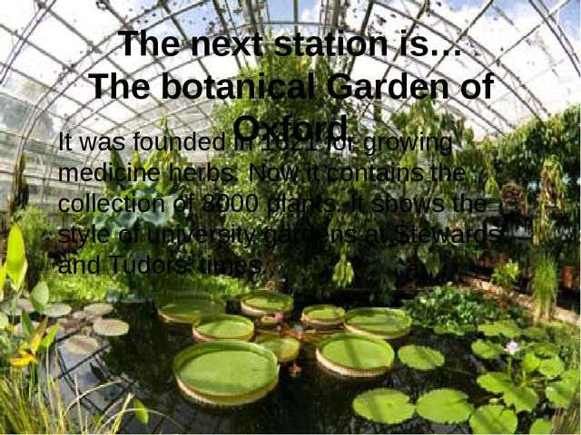 The next station is… The botanical Garden of Oxford It was founded in 1621 fo...