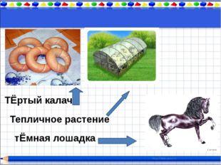 ТЁртый калач Тепличное растение тЁмная лошадка