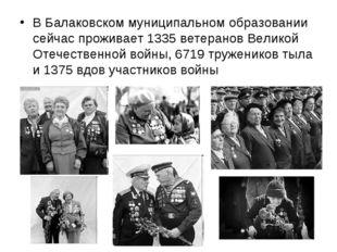 В Балаковском муниципальном образовании сейчас проживает 1335 ветеранов Велик