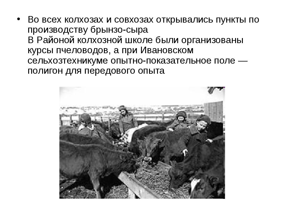 Во всех колхозах и совхозах открывались пункты по производству брынзо-сыра В...