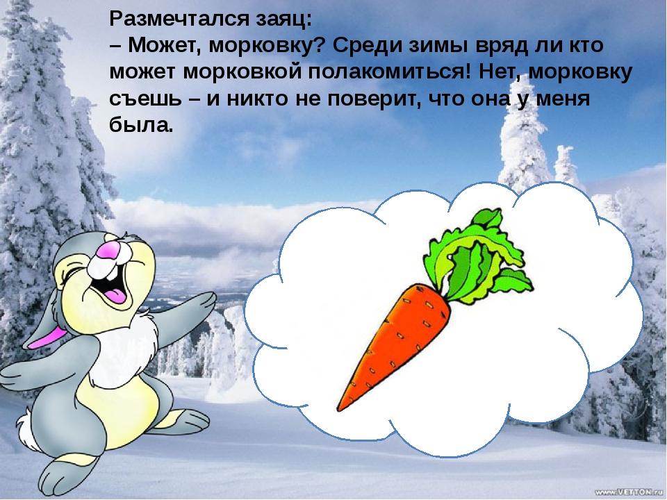 Размечтался заяц: – Может, морковку? Среди зимы вряд ли кто может морковкой...