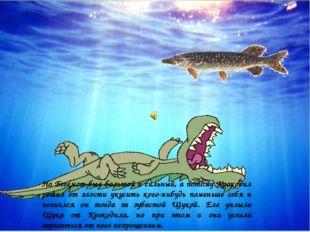 Но Бегемот был большой и сильный, а потому Крокодил решил от злости укусить к