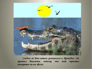 Следом за Бегемотом успокоился и Крокодил. Он простил Бегемота, потому что
