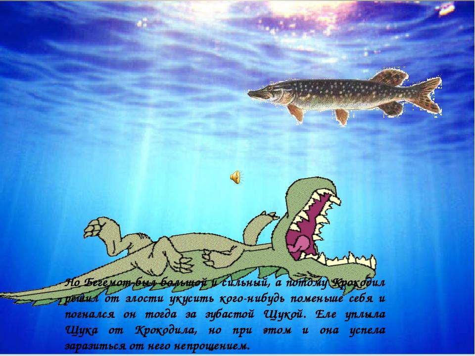 Но Бегемот был большой и сильный, а потому Крокодил решил от злости укусить к...