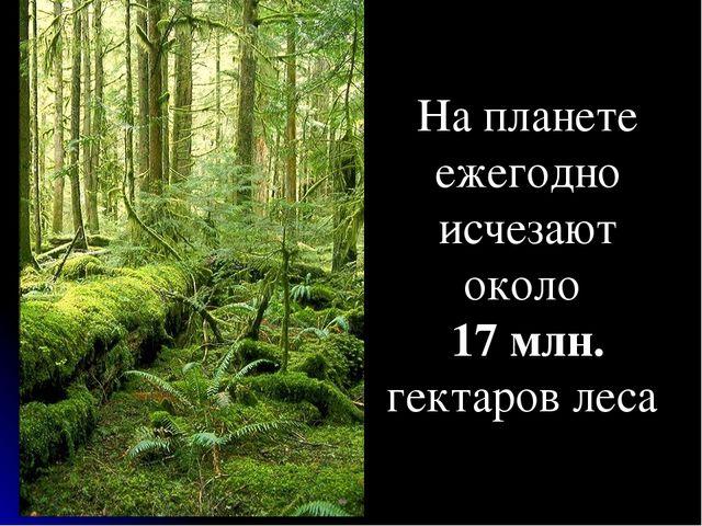 На планете ежегодно исчезают около 17 млн. гектаров леса