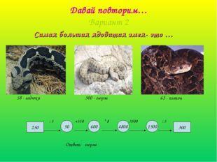 Давай повторим… Вариант 2 Самая большая ядовитая змея- это … 300 600 4800 150