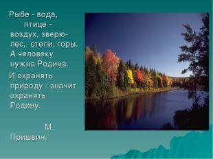 Рыбе - вода, птице - воздух, зверю- лес, степи, горы. А человеку нужна Родин