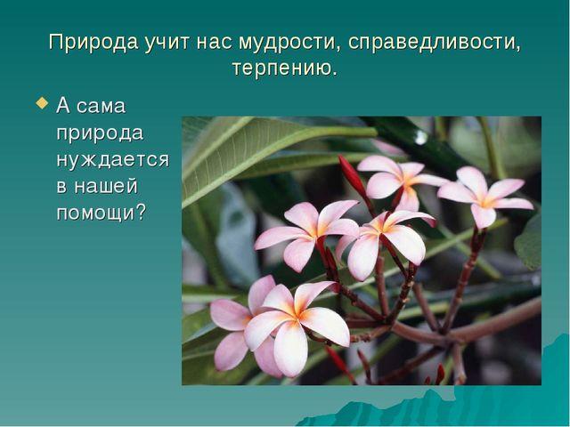 Природа учит нас мудрости, справедливости, терпению. А сама природа нуждается...