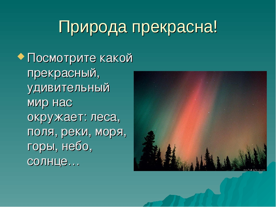 Природа прекрасна! Посмотрите какой прекрасный, удивительный мир нас окружает...