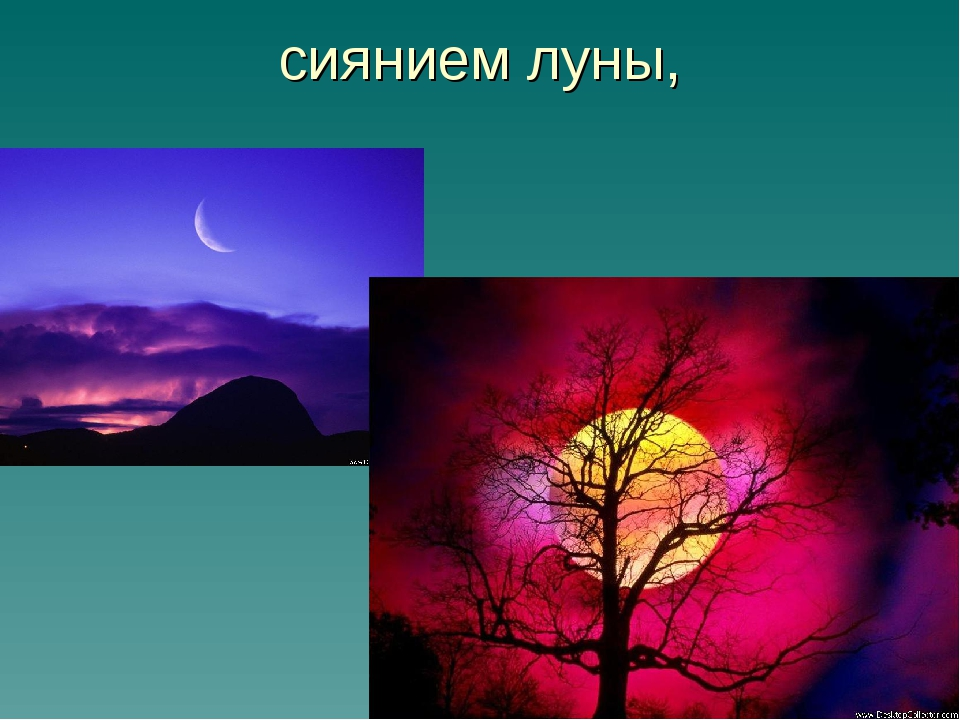 сиянием луны,