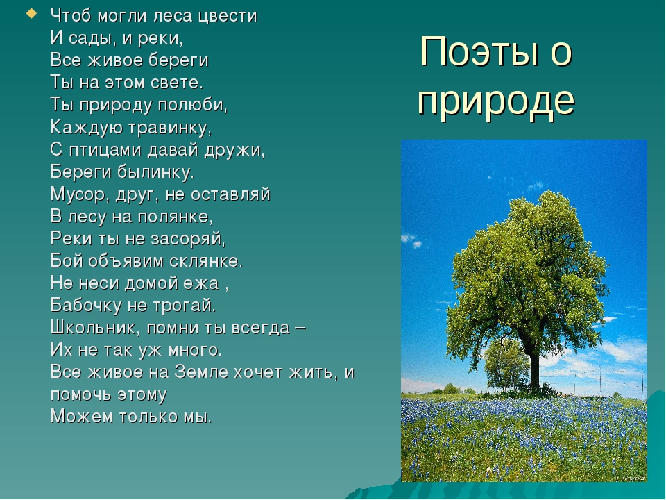 Поэты о природе Чтоб могли леса цвести И сады, и реки, Все живое береги Ты на...