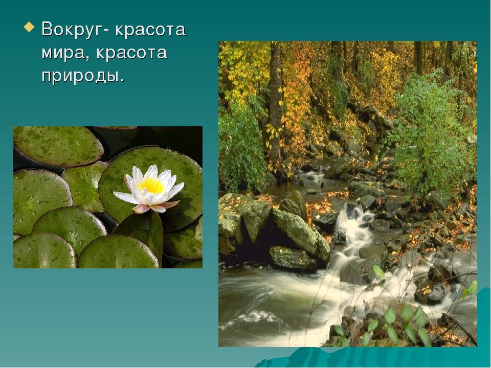Вокруг- красота мира, красота природы.