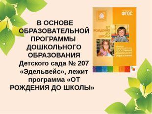 В ОСНОВЕ ОБРАЗОВАТЕЛЬНОЙ ПРОГРАММЫ ДОШКОЛЬНОГО ОБРАЗОВАНИЯ Детского сада № 2