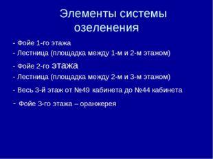 Элементы системы озеленения - Фойе 1-го этажа - Лестница (площадка между 1-м