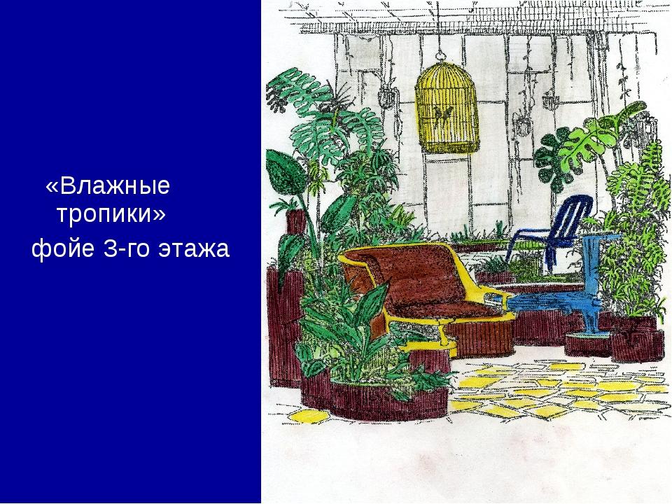 «Влажные тропики» фойе 3-го этажа